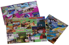 Click to Purchase Vision Board DVDs